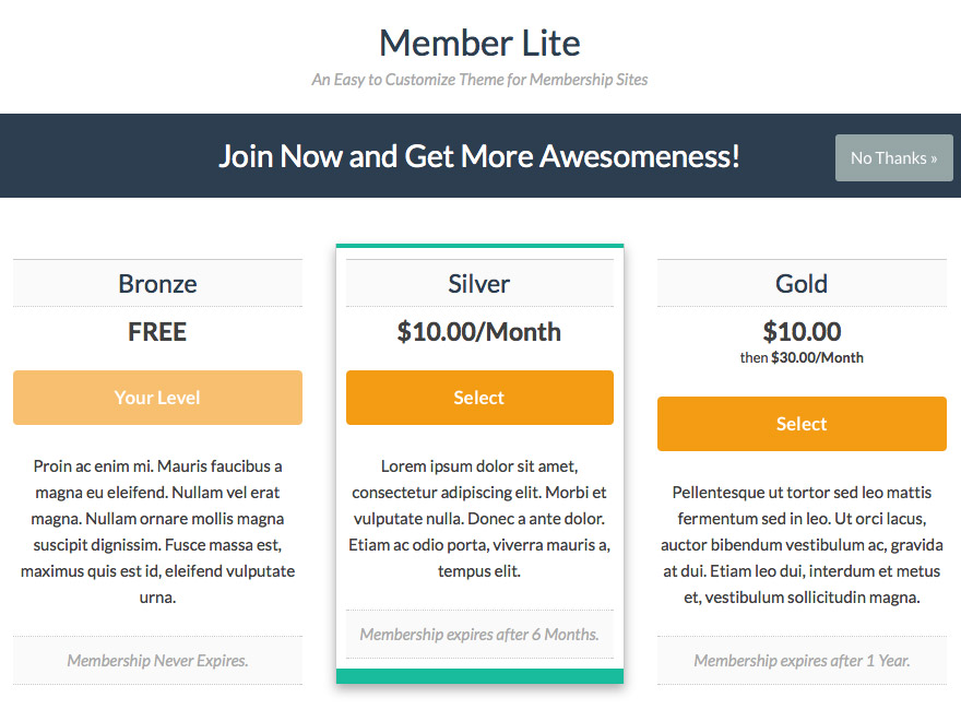 Memberlite Interstitial Page