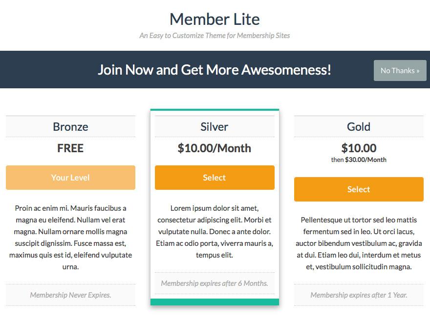 Memberlite Interstitial Page
