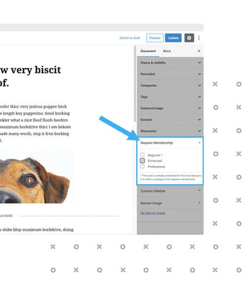 Features Page: Restrict Content Splash