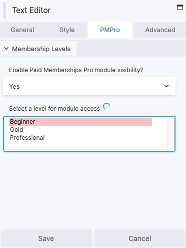 "Beaver Builder ""PMPro"" tab settings."